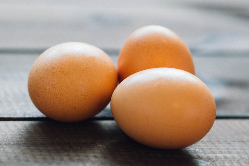 Basic Nutrition To Fuel Your Not-So-Basic Life Part 1:Protein
